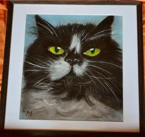 Kočka Stefanie