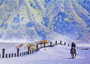 Pouštní jezdec,  Indonésie