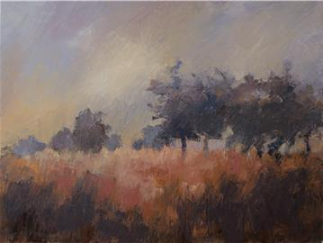 Východ slunce se stromy /  Sunrise Trees